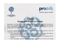 Proskills Sustainability Pledge Certificate
